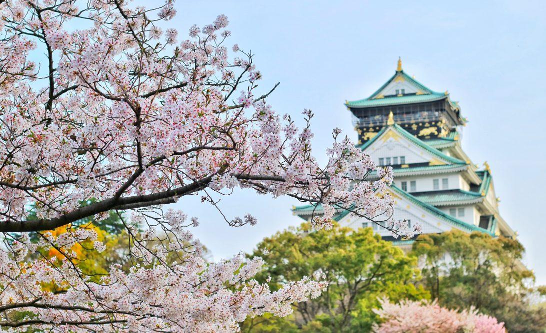 Cherry Blossom dating Azië site Wat zijn enkele problemen met Carbon dating
